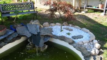 Bassin et coin zen le forum des bonsa - Bassin tortue floride strasbourg ...